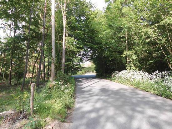 15/00607/AS Little Harbourne, Harbourne Lane, Tenterden, Kent, TN30 6SJ - New Entrance and Driveway