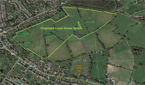 Counter Proposal for Designated Green Space for Local Residents to Enjoy