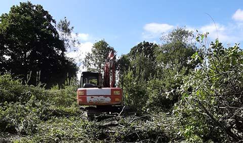 The destruction of Belgar Orchard